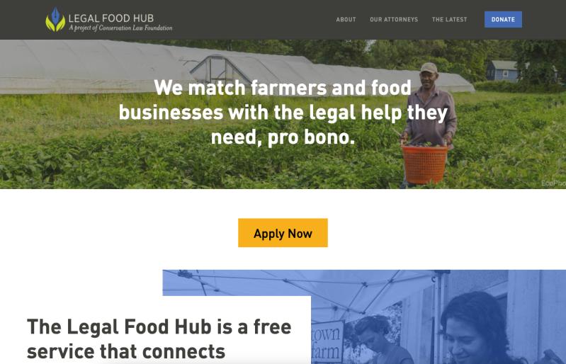 Screenshot of redesigned website homepage